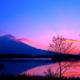 富士の朝景