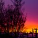 ある日の夕焼け空