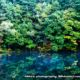 高原の池の紅葉