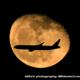 月の出と飛行機