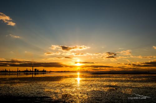東京湾 干潟の夕日