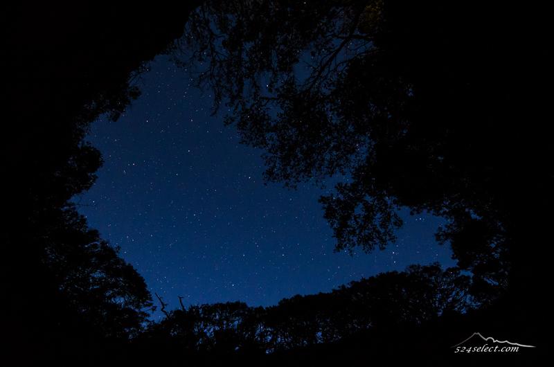竜宮窟(りゅうぐうくつ)〜伊豆下田の海の洞窟から星空を!不思議で美しい海の風景