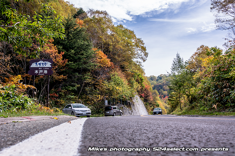 R292紅葉のワインディングロード〜目線を生かして車撮影!秋の国道292号線は道路の撮影スポット