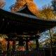深大寺の紅葉2014〜都内の紅葉撮影スポットのひとつ!神代植物公園と合わせて巡る深大寺