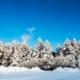 雪と木々の冬景色[信州路]