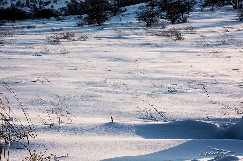 雪景色の表情を撮影!雪の風紋〜風の悪戯でできる自然の模様!真冬の風景写真を楽しむ