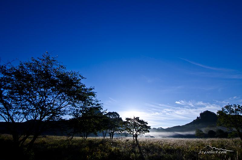 静かな湖畔の森の影から…朝霧に揺らぐ陰影[群馬県]メロディロード