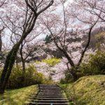満開の桜撮影〜高萩市花貫さくら公園で桜の撮影と花見散歩!茨城県高萩市の花貫ダムに広がる景色