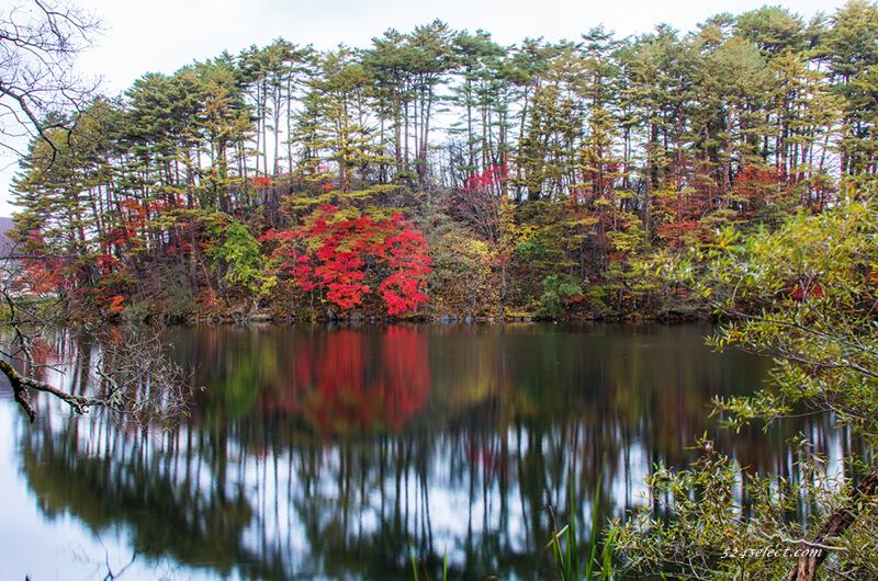 五色沼 秋の紅葉風景
