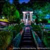夜の公園の撮影