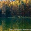 秋の御射鹿池[紅葉]